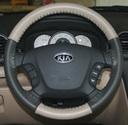EuroTone Sand-Charcoal on Kia Wheel